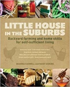 Little_house_in_the_suburbs